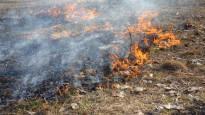 Kevät on täällä: Pelastuslaitoksia työllistävät kymmenet maastopalot – kauden ensimmäinen ruohikkopalovaroitus