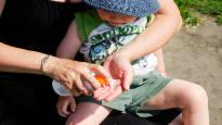 Kaikissa päiväkodeissa ei suostuta rasvaamaan lapsia aurinkovoiteella – keskustele