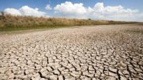 EU haastaa Espanjan oikeuteen kosteikkoalueiden suojelun laiminlyönnistä