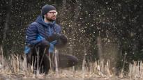 Näiden kuuden lajin suojeleminen voisi estää Suomen luonnon köyhtymisen –