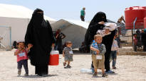 У Финляндии имеется «почти точный» план перемещения своих граждан из лагеря Аль-Хол на родину