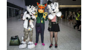 Animecon, cosplay