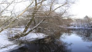Mynäjoessa ei juuri ollut jäitä tammikuussa.