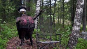 Hevonkosken Ahtisaari