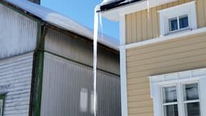 Kuvassa lähes maahan asti yltävä jääpuikko vanhan puutalon räystään kulmassa. Kevätaurinko paistaa.