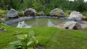 Hulevesiallas puutarhassa