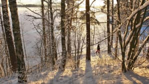 Henkilö kävelee lumista rantapolkua