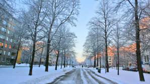 Luminen katu Tampereella