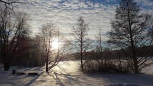 Aurinkoinen talvipäivä