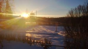 Aurinko sokaisee