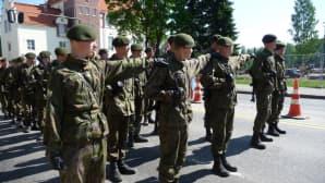 Itä-Suomen sotilasläänin alueellinen puolustusvoimain lippujuhlapäivän paraati Joensuussa 2013.