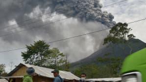Paikalliset asukkaat pakenevat purkautuvan Sinabung-tulivuoren syöksemien kivenlohkareiden ja tuhkapilven alta.