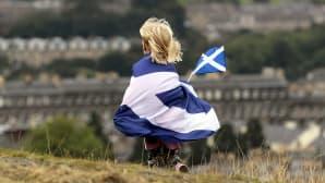 Skotlannin lippuun kääriytynyt lapsi maan itsenäisyyttä kannattavan mielenosoituksen aikana.