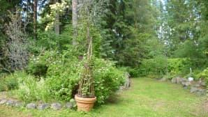 Kärhöruukku Honakamajan metsäpuutarhassa Tammelassa