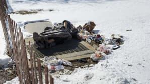 Koditon nukkuu tuuletusluukun päällä talvisessa Washington DC:ssä 17. helmikuuta 2015.