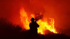 Palomies yrittää sammuttaa etenevää maastopaloa.