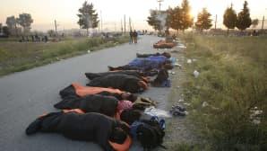 Siirtolaiset ja turvapaikanhakijat nukkuvat tiellä Idomenissa pohjois-Kreikassa.