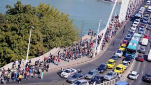 Sadat turvapaikanhakijat kävelevät Elisabet-siltaa Tonavan yli Budapestissa.