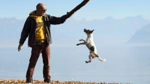 koira hyppää kohti miehen pitelemää keppiä