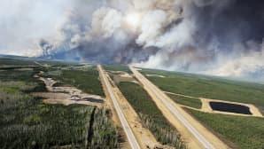 Valtavat metsäpalot riehuvat Albertan osavaltiossa Kanadassa.