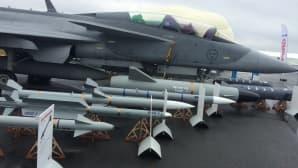 JAS39:n aseistusta. Kone on yksi ehdokas Hornetien seuraajaksi.