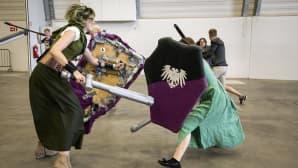 taistelua miekoilla ja kilvillä