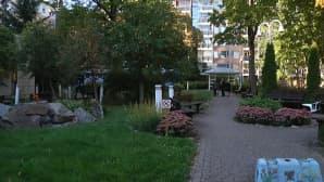 Julkiset rakennukset: Ruusukortteli