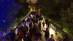 Valon kaupunki 2016, ruuhkaa Kinakujan sillalla.