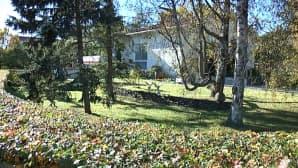 Pajamäenkatu 11