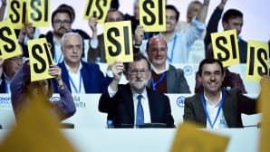 poliitikot kohottavat äänestyslappuja kädessään