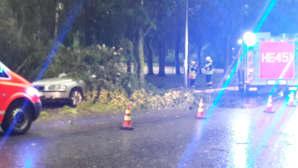 Oulunkyläntiellä Helsingissä puu kaatunut auton päälle.