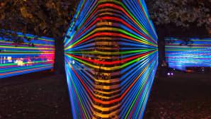 KASJOn uv-valoteos koostuu lukuisista uv-valosäikeistä.