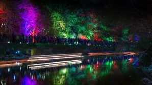 Sadat valoteokset lipuivat pitkin Tourujokea Valo virtaa -illassa perjantaina.