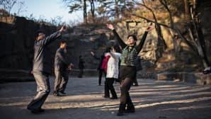 Ihmiset tanssivat puistossa.