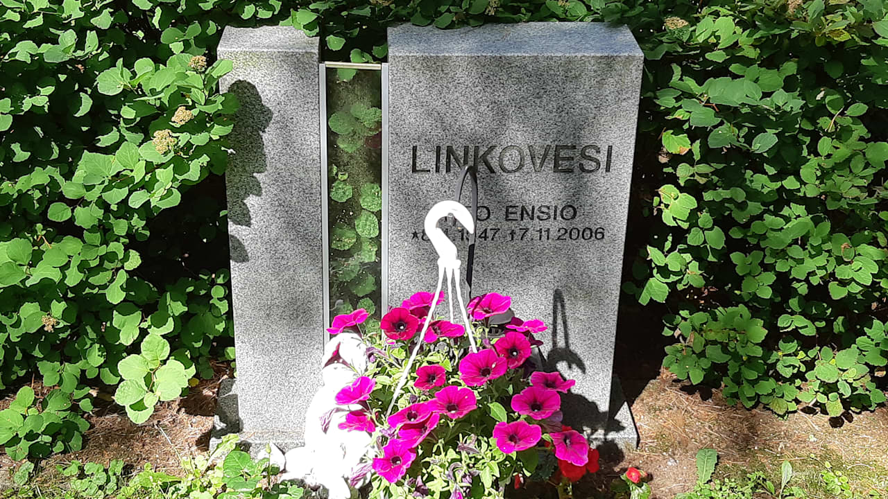 Leo Linkovesi