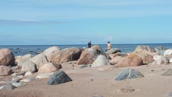 Viroa suomalaissilmin