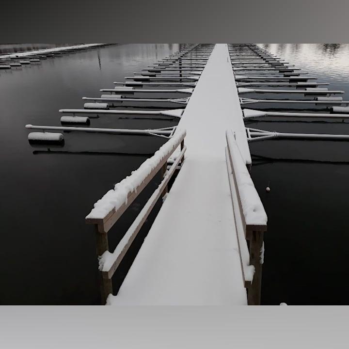 Pälsynaho Rovaniemi
