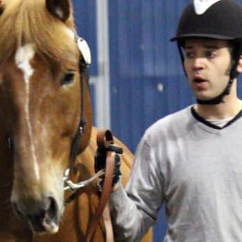 Roger Lumberg hoitaa ja kasvattaa hevosia