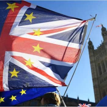 """""""Brexit ei ole vain alku- ja päätepiste vaan laaja ilmiö, joka vaikuttaa jokaisen arkiseen elämään"""""""