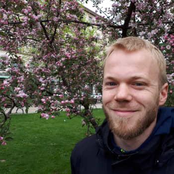 Mehiläisten perimää selvitetään ensimästä kertaa Suomessa - Keski-Suomessa mehiläishoidon suosio on kasvussa