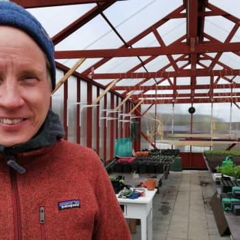 Pumpaodlare Mats Nyman vill inte ha fler kyliga majdagar
