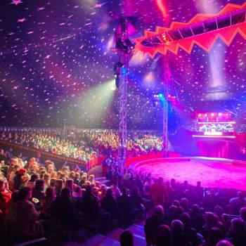 Sirkus Finlandia satsar i år på utländska artister och om några år på ett privat cirkusmuseum
