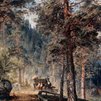 Maalausten metsät