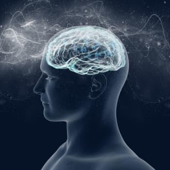 Aivot alkavat rappeutua jo 30-vuotiaana, mutta oppimiskykyä voi ylläpitää elämätavoilla ja aivoharjoituksilla