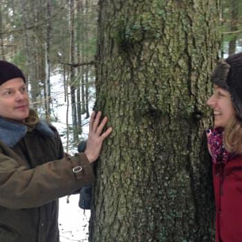 Metsäradio.: Puut ja mikrobit tarjoavat terveyttä