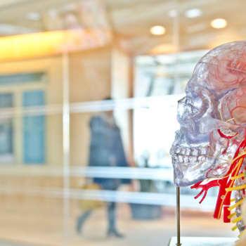 Tiina Lundbergin huoltamo: Aivotaidot parantavat elämänhallintaa ja ihmissuhteita