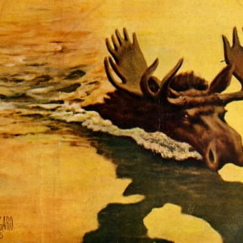 Luolamaalausten aikaan olisin ollut hirven heimoa