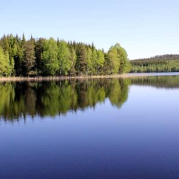 Radio Suomi Kuopio: Esittelyssä Etelä-Konneveden kansallispuisto