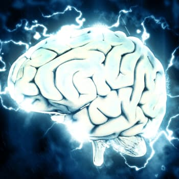 Tiedeykkönen: Sikiön aivot ovat itseohjautuva systeemi