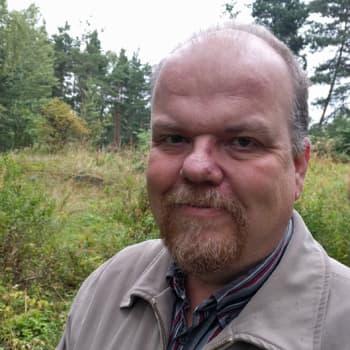 Metsäradio.: Patteritöiden metsänkaato